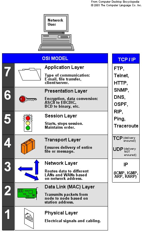 network layers osi model essay Answer: true which standards organization is responsible for providing the osi  model isoc  short answer: list two items that happen on the network layer.