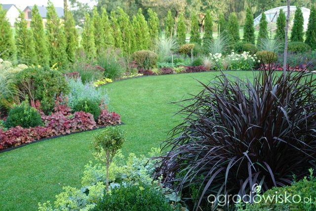 Ogród mały, ale pojemny;) - strona 59 - Forum ogrodnicze - Ogrodowisko