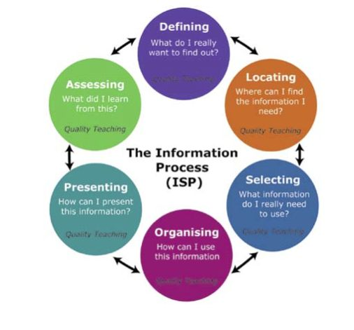 how do you process information How does the brain process information the human brain is a complicated, creative information-processing system as technology advanced from primitive to modern, the.
