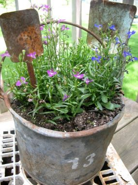 "An old pail and some ""seen-better-days"" shovels make a great planter for the patio!"