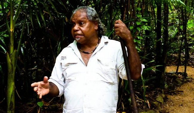 Mossman Gorge guide Uncle Roy Gibson. - Dream Time Legend Walk - Learn about the spirituality and traditions of the Kuku Yalanji people.