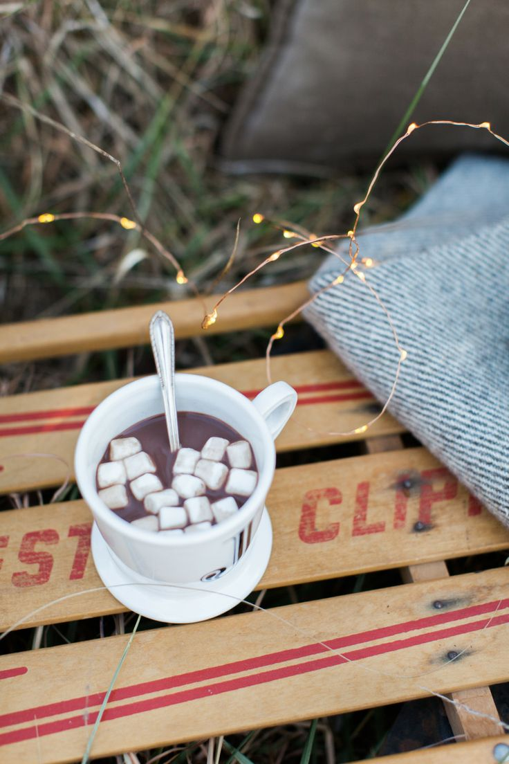 A winter picnic