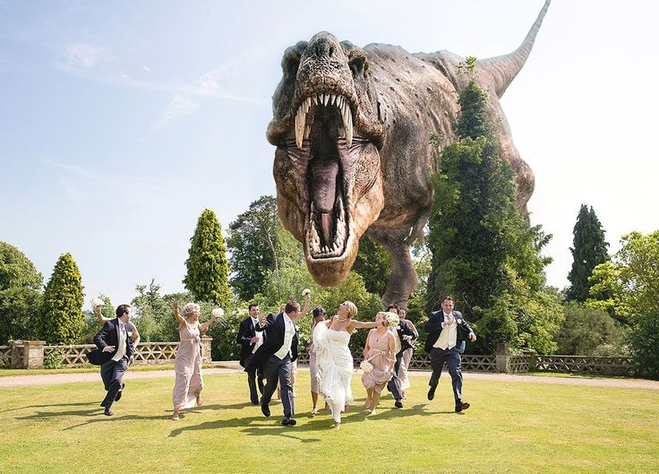 Dinosaur Wedding Photograpy T-Rex Photobomb