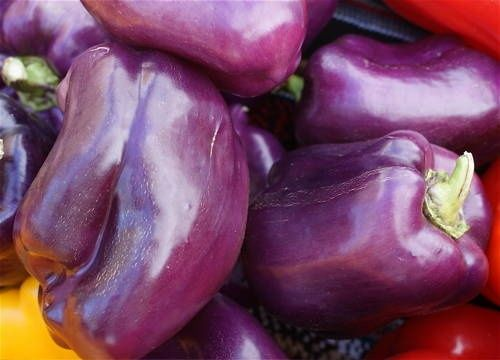 purple bell peppers... taste just like the green, but better, cause they're purple!!