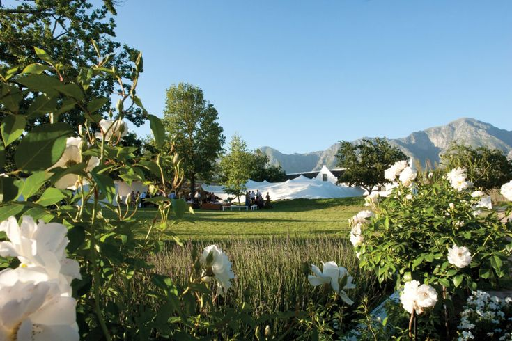 A beautiful country wedding setting: The Oaks, Greyton