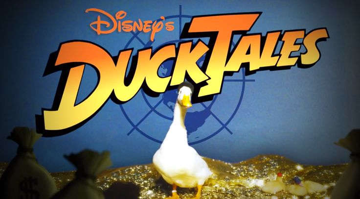 A mindenit, a nevetéstől leestem a székről! A híres rajzfilm intróját ezúttal élő állatokkal játszották újra! :D