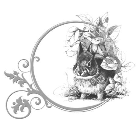 Creapassionpetitlapin Rabbit transfer printable