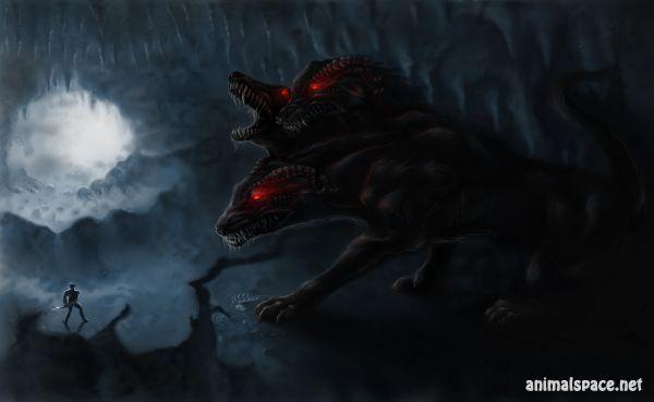 Цербер или Кербер – мифическое древнегреческое существо, имевшее вид огромного трёхголового пса со змеиным хвостом, олицетворяющий будущее, настоящее и прошедшее. Предназначение Цербера было охранять выход из преисподней Аида, бога подземного царства мёртвых. Кербер беспрекословно пропускал умерших душ в Ад, однако обратно не выпускал никого, ведь из царства мёртвых нет возврата.