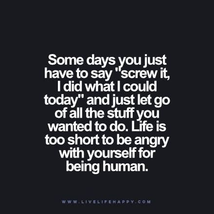 "Some days you just have to say ""screw it, I did what I could today"" and just let go of all the stuff you wanted to do. Life is too short to be angry with yourself for being human."