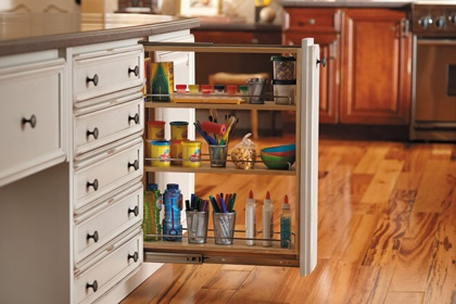 34 best images about roll outs pull outs on pinterest for Kitchen craft cabinets home depot