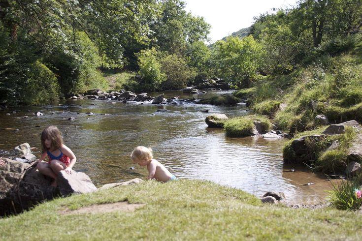 Dog Friendly Campsites Dartmoor