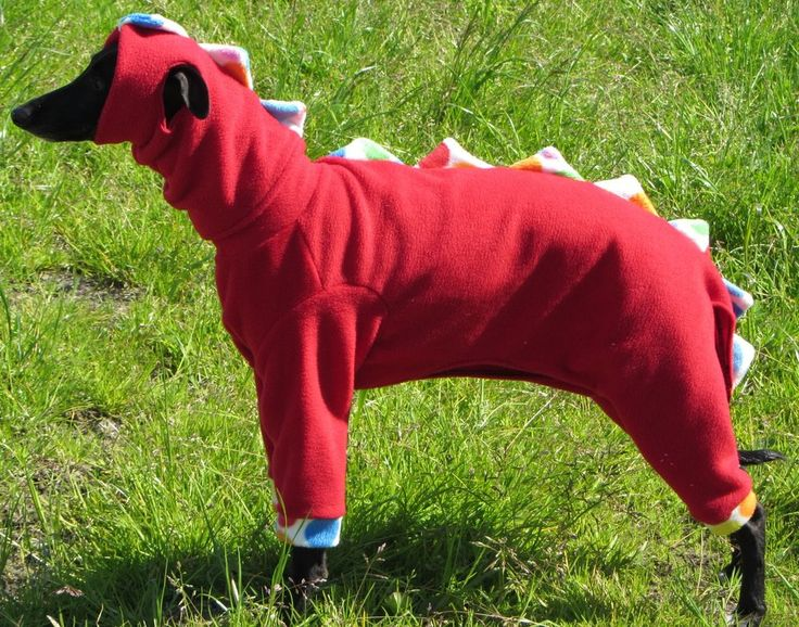 151 best Sewing Projects: Pets images on Pinterest | Dog clothing ...