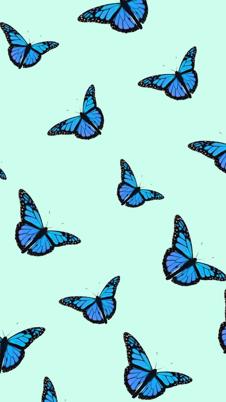 Background Butterfly Phonebutterfly Phone Background In