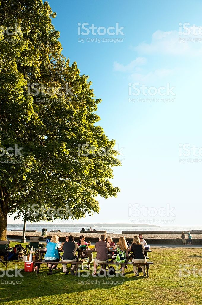 A family picnic on a beautiful day royalty-free stock photo