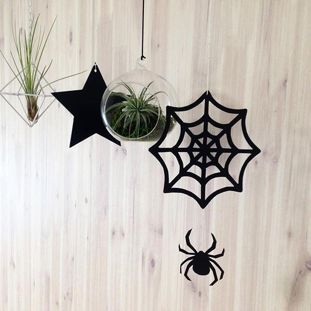 【mienobu】さんのInstagramをピンしています。 《大好きなサイト#happybirthdayproject さんから#無料ダウンロード した#蜘蛛の巣 と#クモ っ‼︎ 久々に#切り絵 しました〜^ ^ 他にも簡単に作れるかぼちゃやオバケの#モビール の#テンプレート あり✨楽しいですよ〜💓 やっぱり#ハロウィン 準備テンションあがるー✨ @hapiba さんのインスタはこちら💖 #halloween #halloween2016 #spider #spiderweb #セリア #スター #star #エアープランツ #モノトーンインテリア #ハンドメイド作家 #ナベチン #ハッピーバースデープロジェクト #テラリウム》