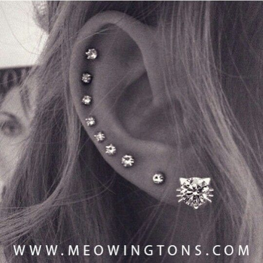Multiple ear piercings                                                       …