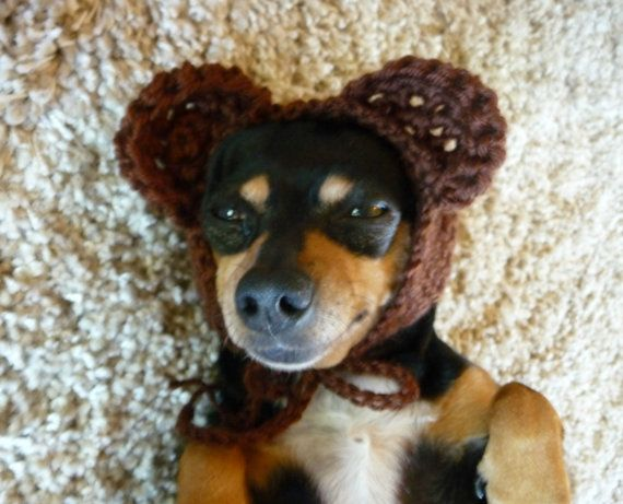 Bear Dog Hat CROCHET PATTERN Crochet Dog Hat Pattern by zxcvvcxz