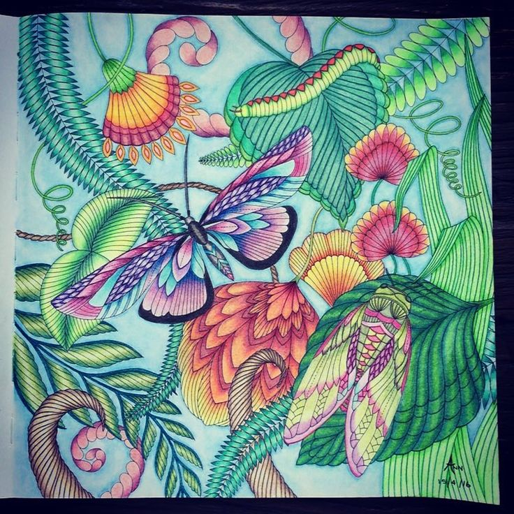 132 Best Tropical Wonderland Images On Pinterest