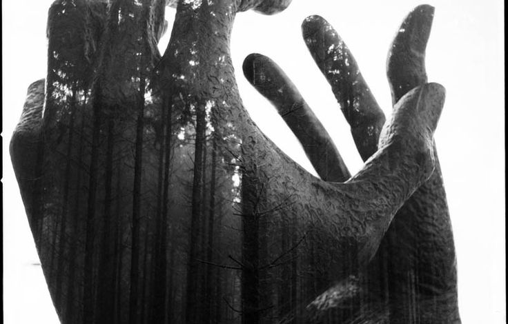 A GRIPPING DOUBLE EXPOSURE  Photograph by FLORIAN IMGRUND (inthoughts on Flickr)  In this incredible double exposure by Florian Imgrund, we see his hands cast against an incredible shot of the forest. It's an incredible effect and the composition is truly gripping. Florian states that this shot was an analogue double exposure meaning [...]