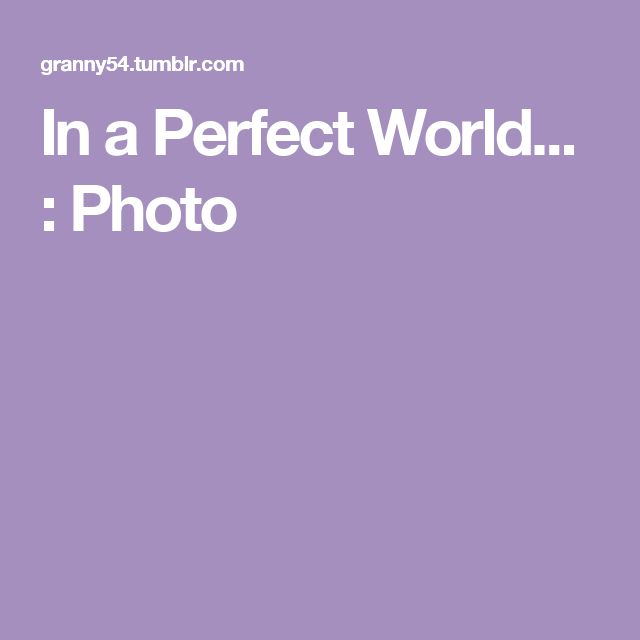 In a Perfect World... : Photo