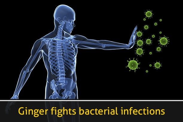 Ginger fights bacterial infections: Ginger is found to be amazing when it comes to fighting bacterial attacks. In a study by The Journal of Microbiology and Antimicrobials, published in 2011, the effect of ginger on Staphylococcus aureus and Streptococcus pyogenes, bacterias that can cause blood poisoning and pneumonia, was found better than the conventional antibiotics. Ginger extracts are also used in treating bacterial infections on the body.