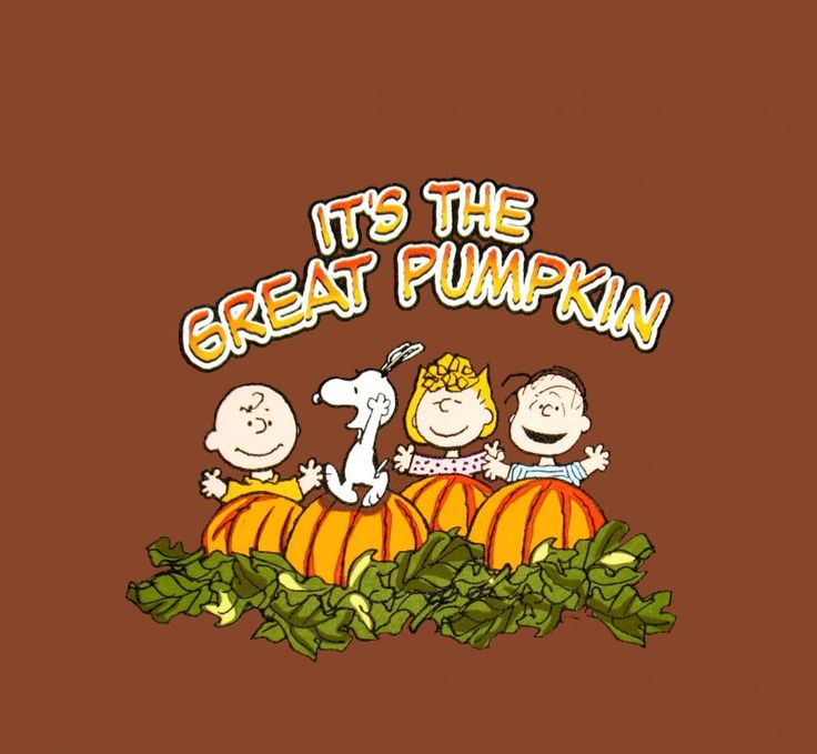 Its The Great Pumpkin Charlie Brown Quotes: 144 Best Charlie Brown Holidays Images On Pinterest