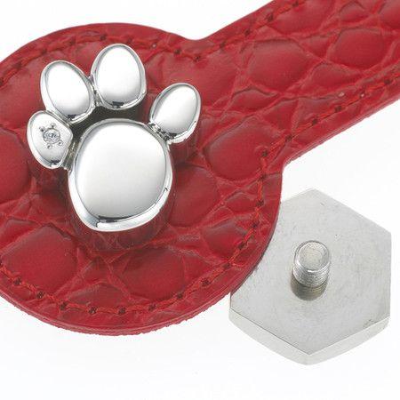 """Scoprite la forza dei magneti anche per il vostro amico a quattro zampe con il gioiello per collare di animali """"Zampina"""" di Magnetix Wellness"""