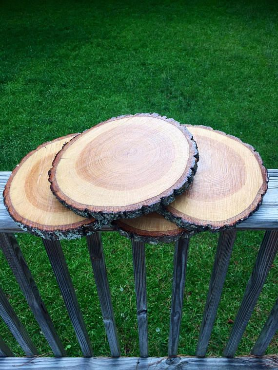 Large Tree Slices For Sale