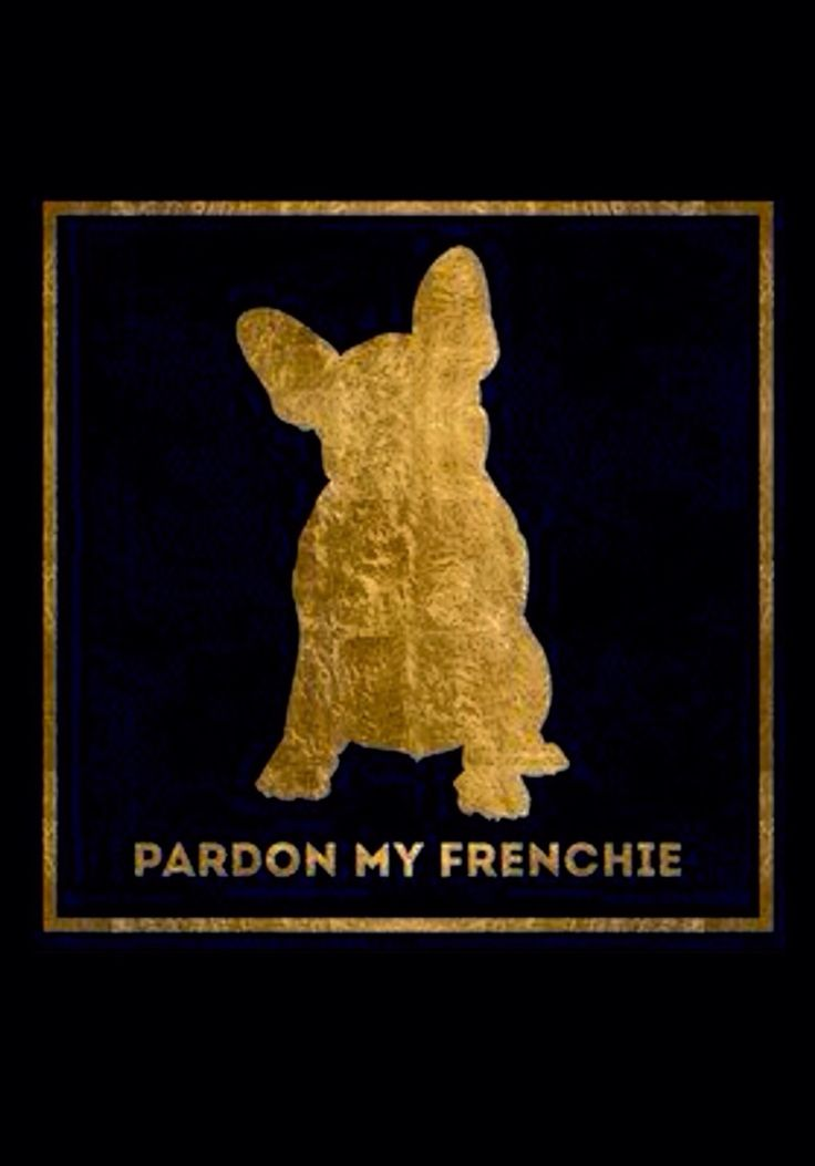 'Pardon My Frenchie', poster