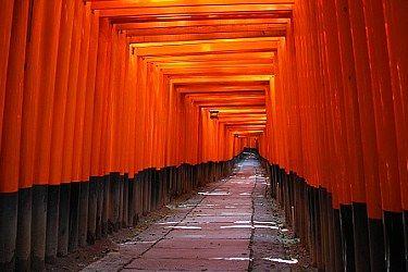 Fushimi Inari Shrine•••  The ultimate torii gate experience.