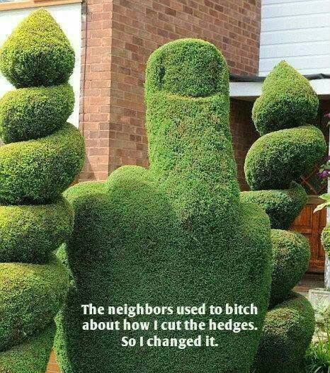 For our lovely neighbors