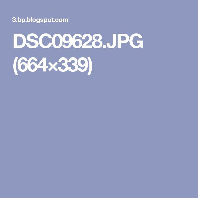 DSC09628.JPG (664×339)