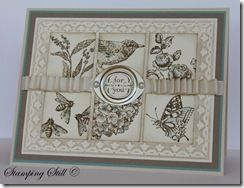 I've been wanting to use that embossing folder border... now I know how.  Gorgeous!