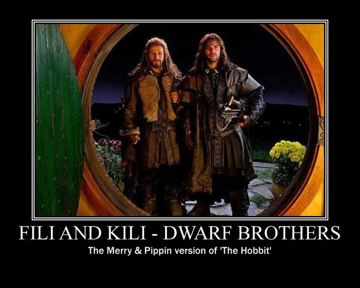No one can be as awesome as Merry and Pippin <3 <----I bet Fili and Kili come close though, right?