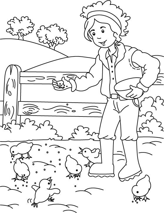 farm coloring pages for preschoolers - photo#45