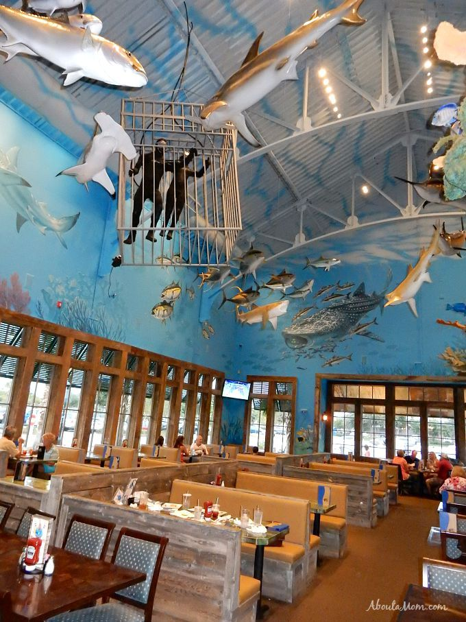 Don T Miss These Great Destin Restaurants Florida Pinterest And Vacation