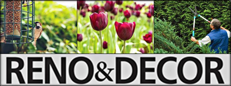 Reno and Decor Digital Magazine: Gardening and Outdoors - Garden Expert: Garden Assets #HomeRenovations #HomeDecorIdeas http://bit.ly/reno232