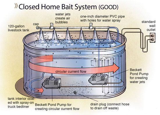 Oxygen and temperature are the two most critical factors affecting baitfish survival.