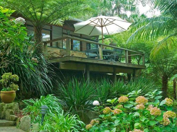 Charming stone cottage hidden among tree ferns