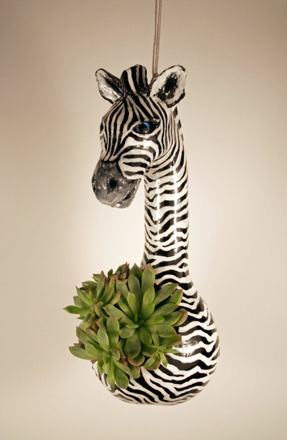 Zebra gourd succulent and cactus hanging planter by EricsGourdArt