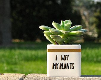 I Wet My Plants Adorable Succulent Pot Personalized Gifts Plant Puns Birthday Gift Funny Christmas