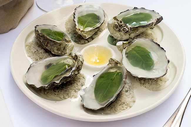 Philippe's oysters in sea water Jelly. Photo: Carmen Zammit