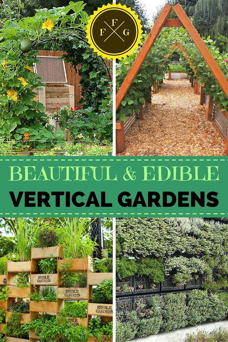 Vertical garden design with orchids space saving backyard landscaping - 5 Gorgeous Vertical Gardening Beds