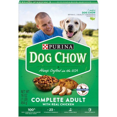 Purina Dog Chow Complete Adult Dry Dog Food, 16 Oz.