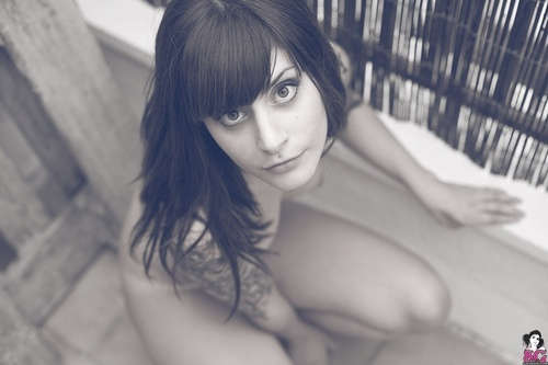 Nekrofelia.: Inked Girls, Nekrofelia, Tattoos, Suicide Girls, Piercings