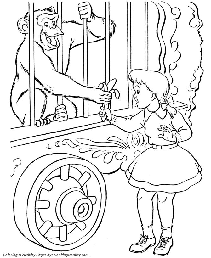 circus monkey coloring page circus monkey in a cage