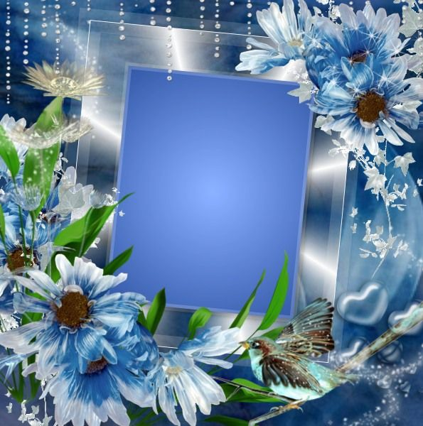 Beautiful blue flowers. Click to add a photo to the frame using Imikimi