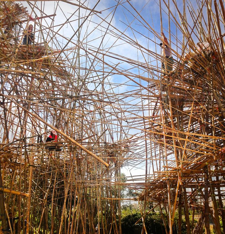 starn brothers build-up monumental big bambu installation in jerusalem - designboom | architecture