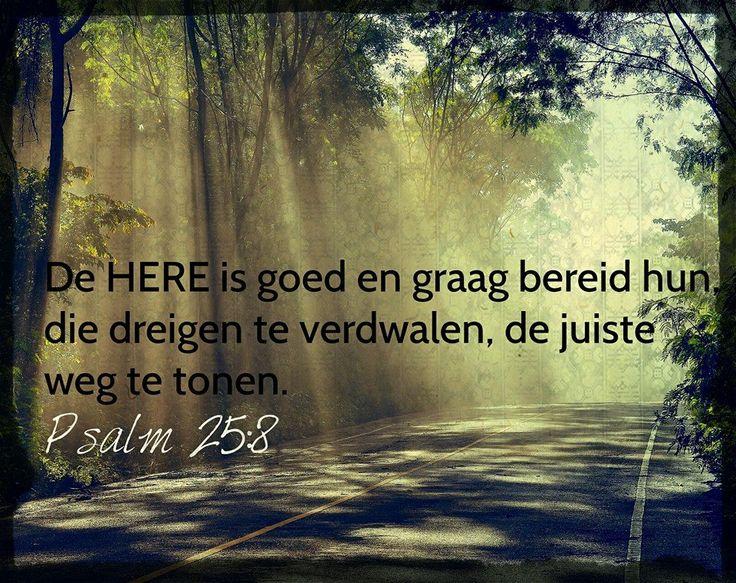 PSALM 25:8 - Dagelijkse bijbel bemoediging