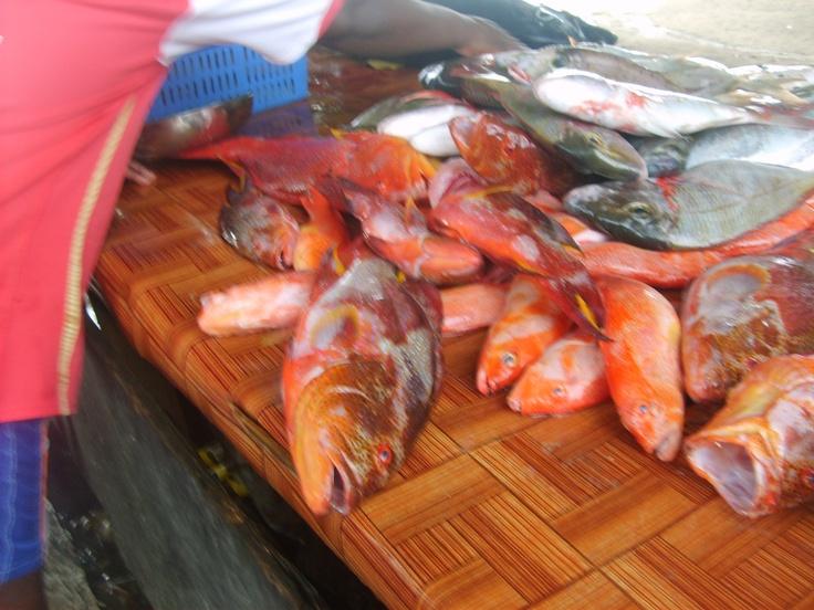 la vente des poisson a ile maurice